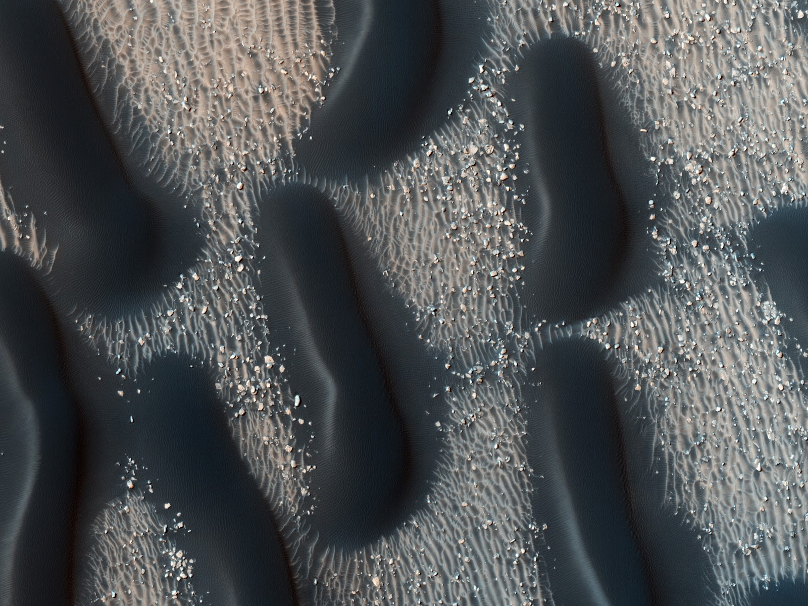 Proctor Crater Dune Field by HiRise